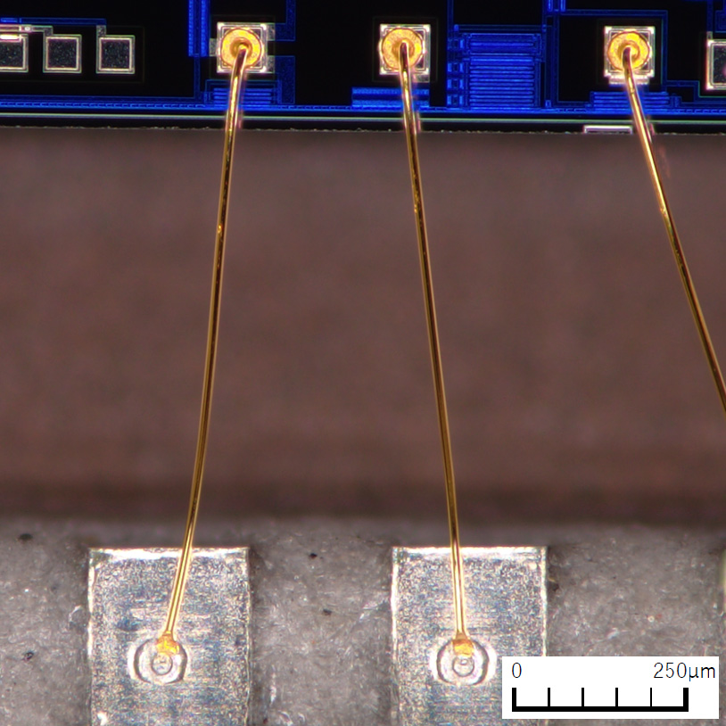 clearly shows the entire section where the pads are soldered during wire bonding
