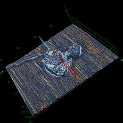 Piston ring SE_ob5X_3D