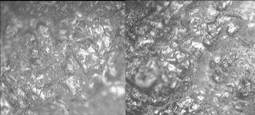 Figure 5 : Photomicrographs of the surfaces of scrapers used on fresh hide and dry hide at 200x magnification