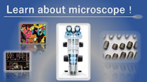 Learn about microscope